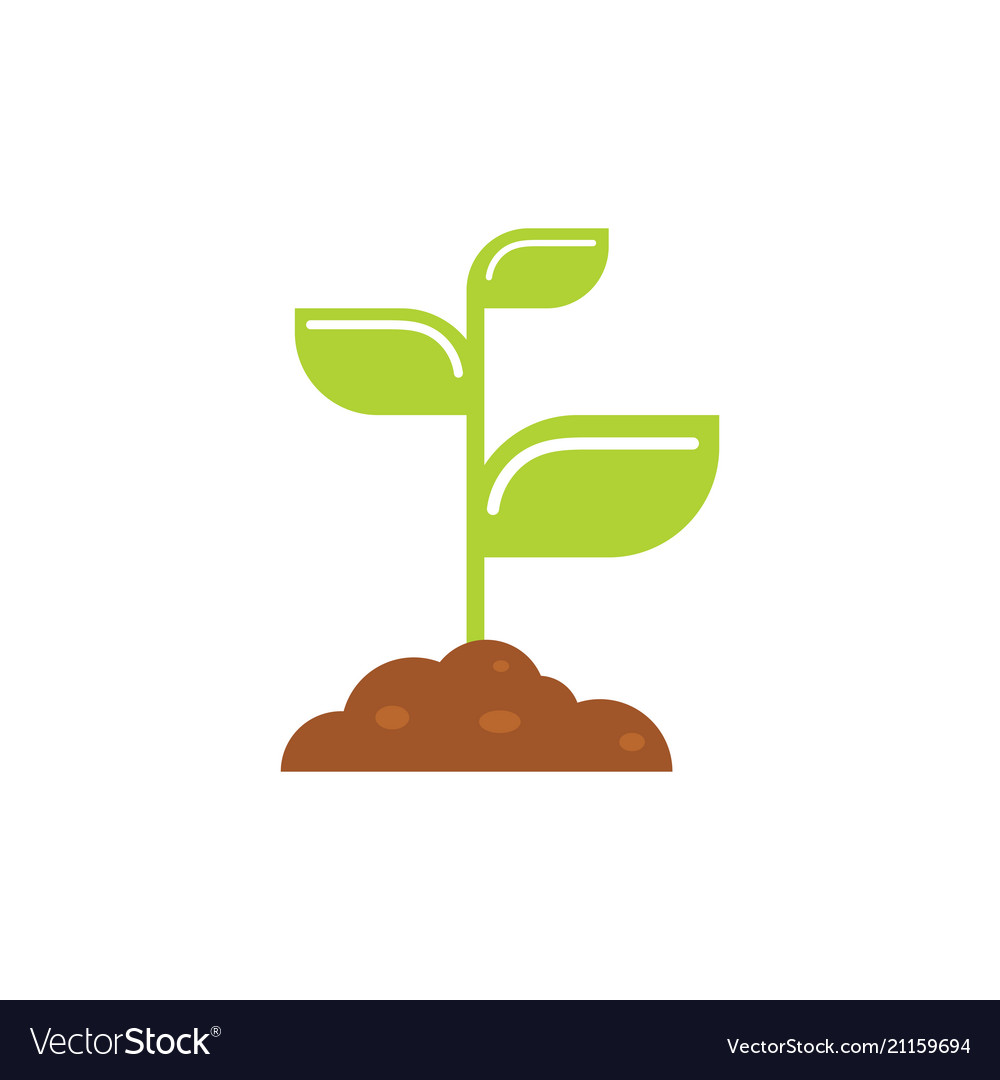 Young sprout in a pile of earth - concept