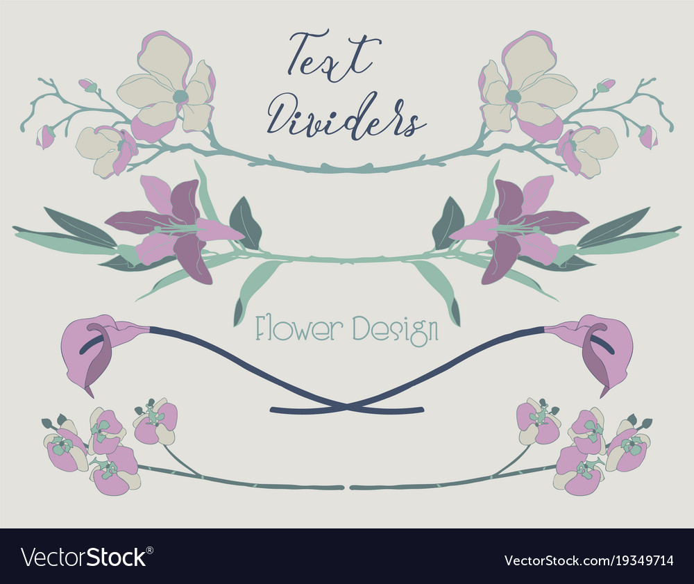 Colorful floral text dividers flower
