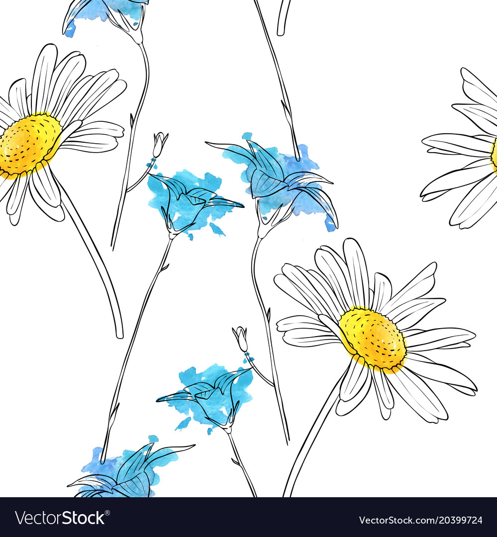 Drawing flower of daisy royalty free vector image drawing flower of daisy vector image izmirmasajfo