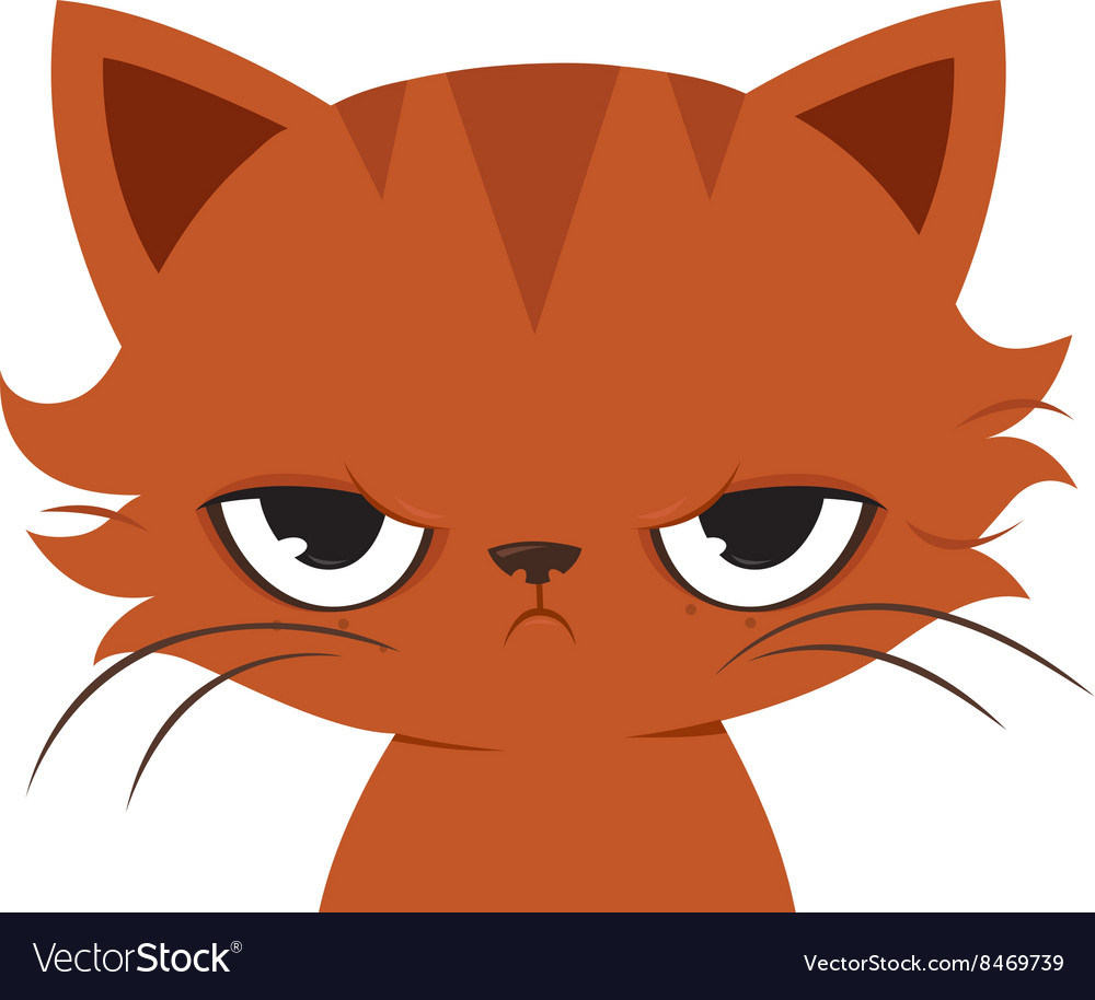angry cat cartoon cute grumpy cat royalty free vector image rh vectorstock com funny angry cat cartoon angry cat cartoon pics