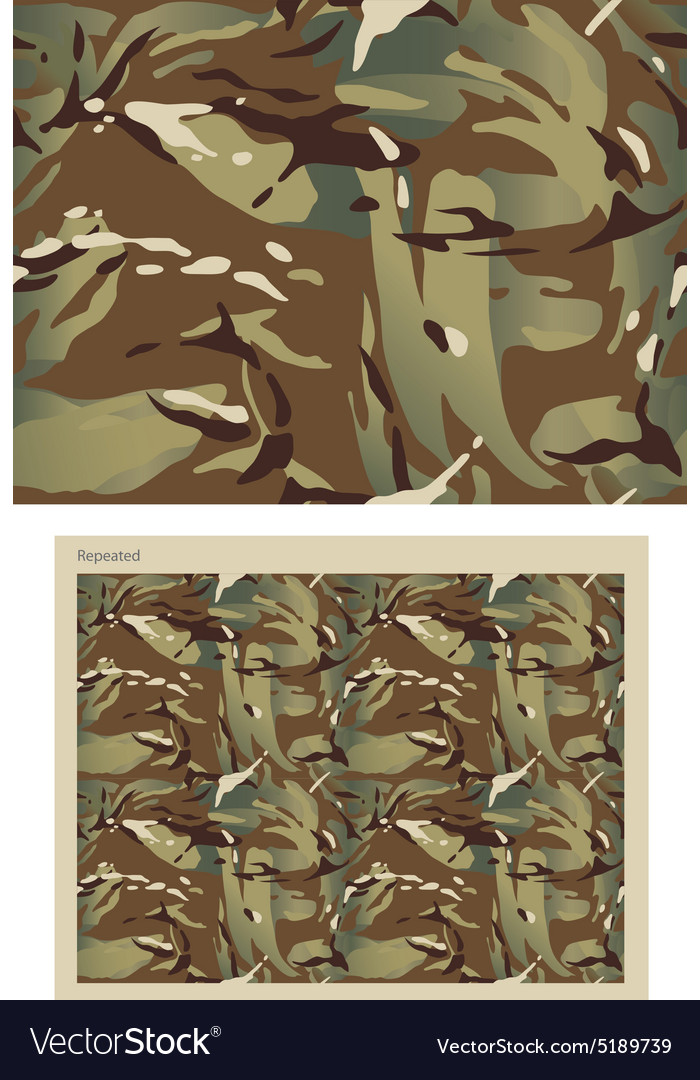 Camouflage Repeat Print vector image