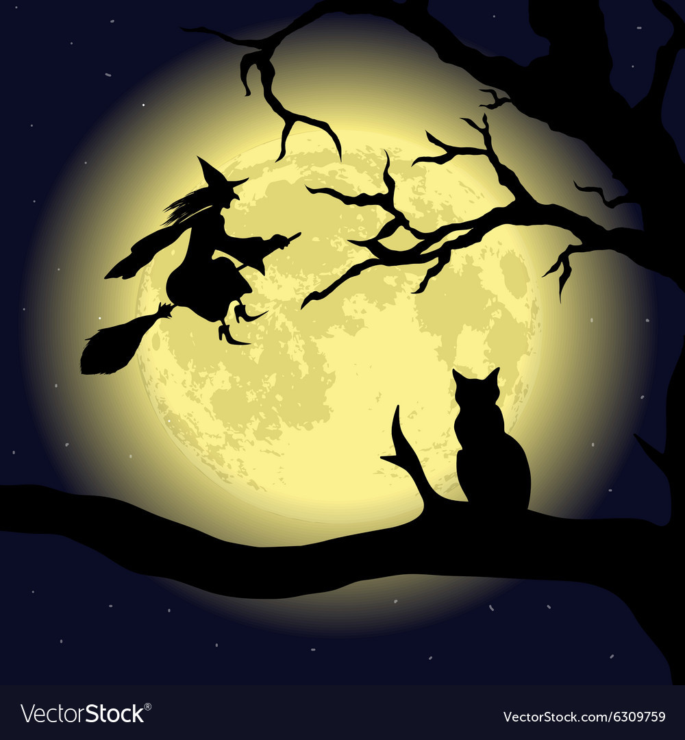 Black cat on tree at full moon