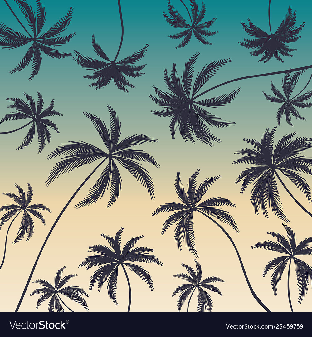Coconut palm trees on colorful background