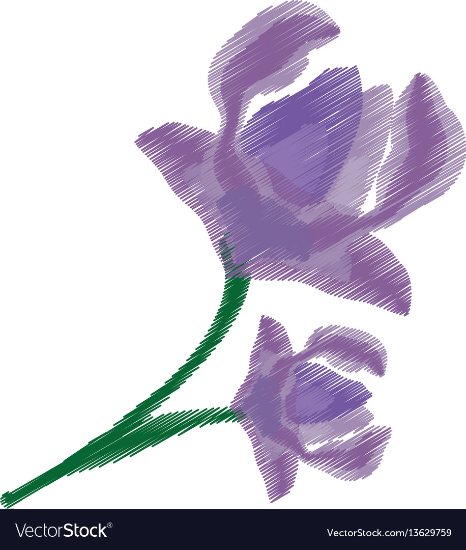 Drawing anemone flower ornament image