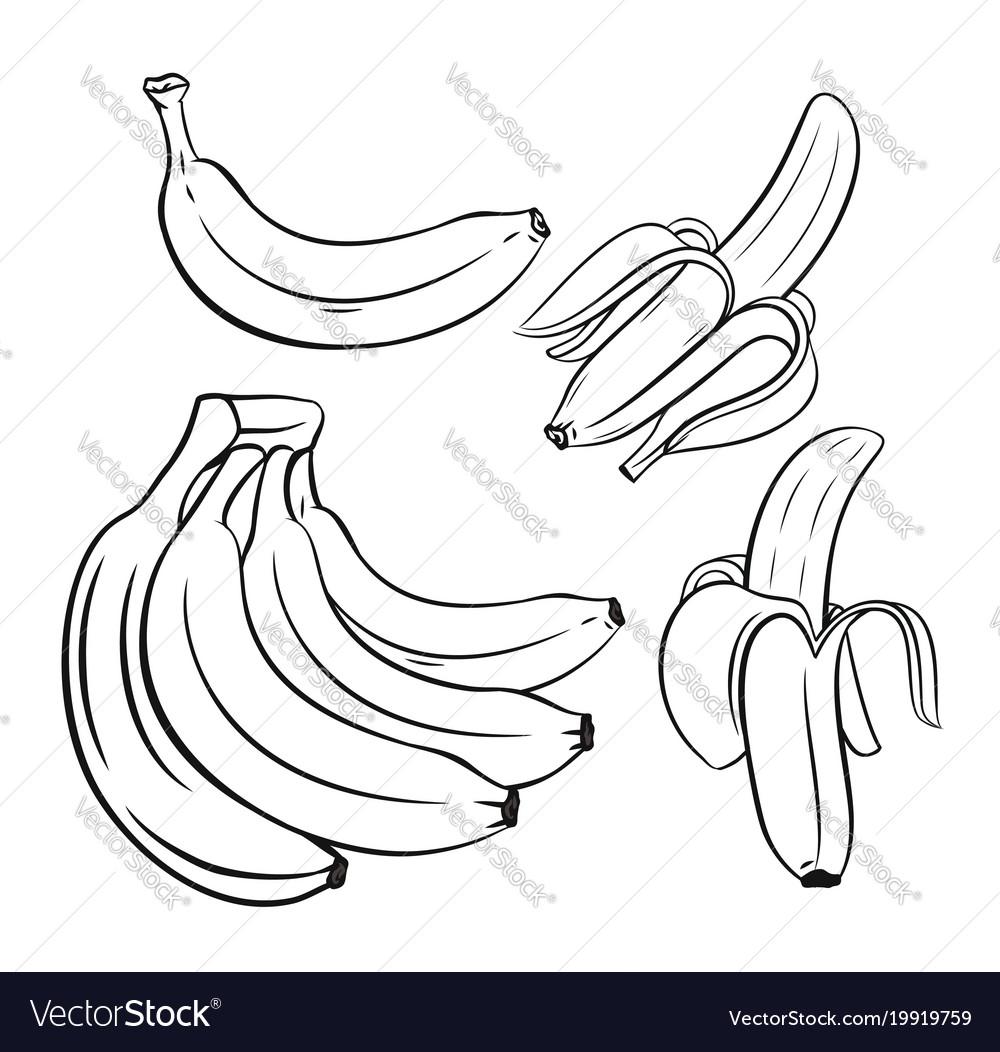 Set of outline bananas