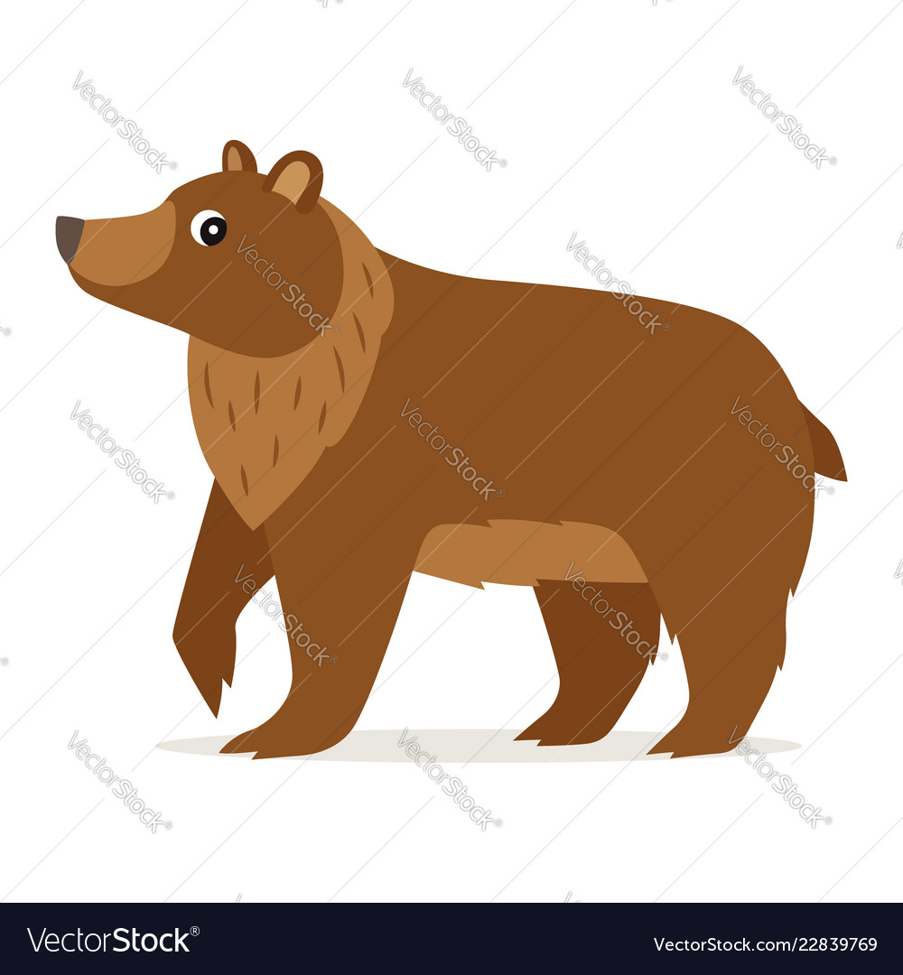 Icon of brown bear isolated forest woodland