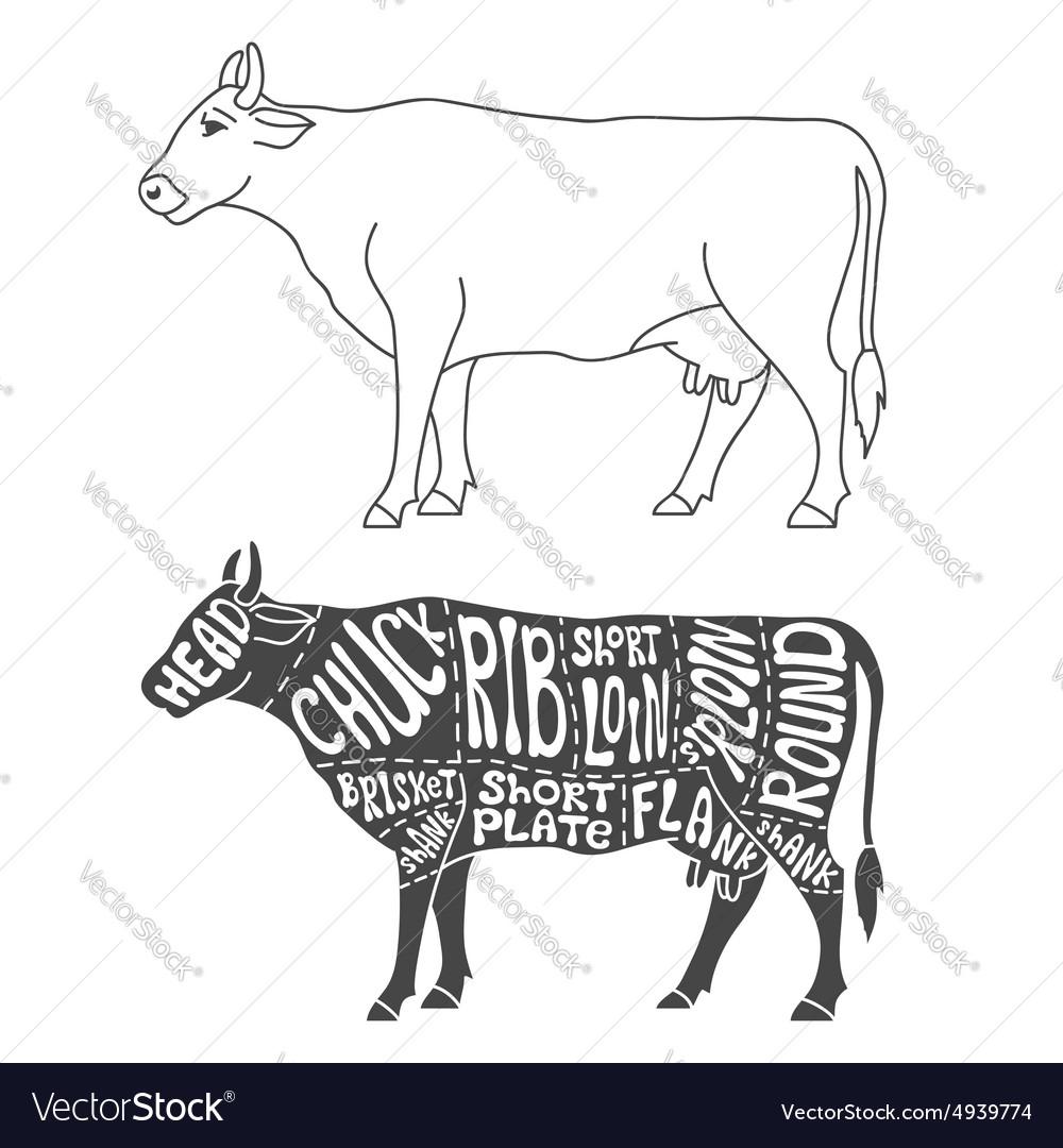 Beef cuts diagram royalty free vector image vectorstock beef cuts diagram vector image ccuart Gallery