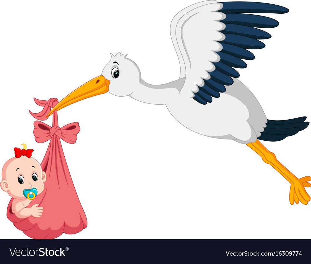 stork with baby cartoon royalty free vector image
