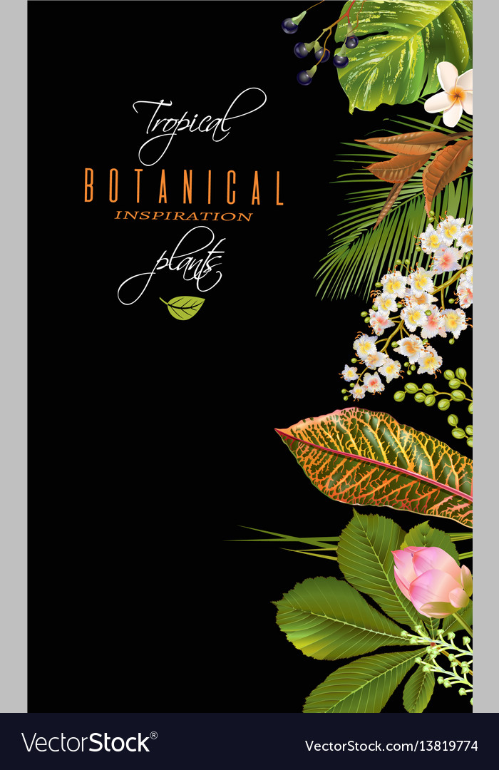Tropial plants banner