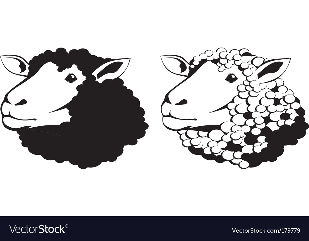 sheep royalty free vector image vectorstock rh vectorstock com sheep vector silhouette sheep vector png