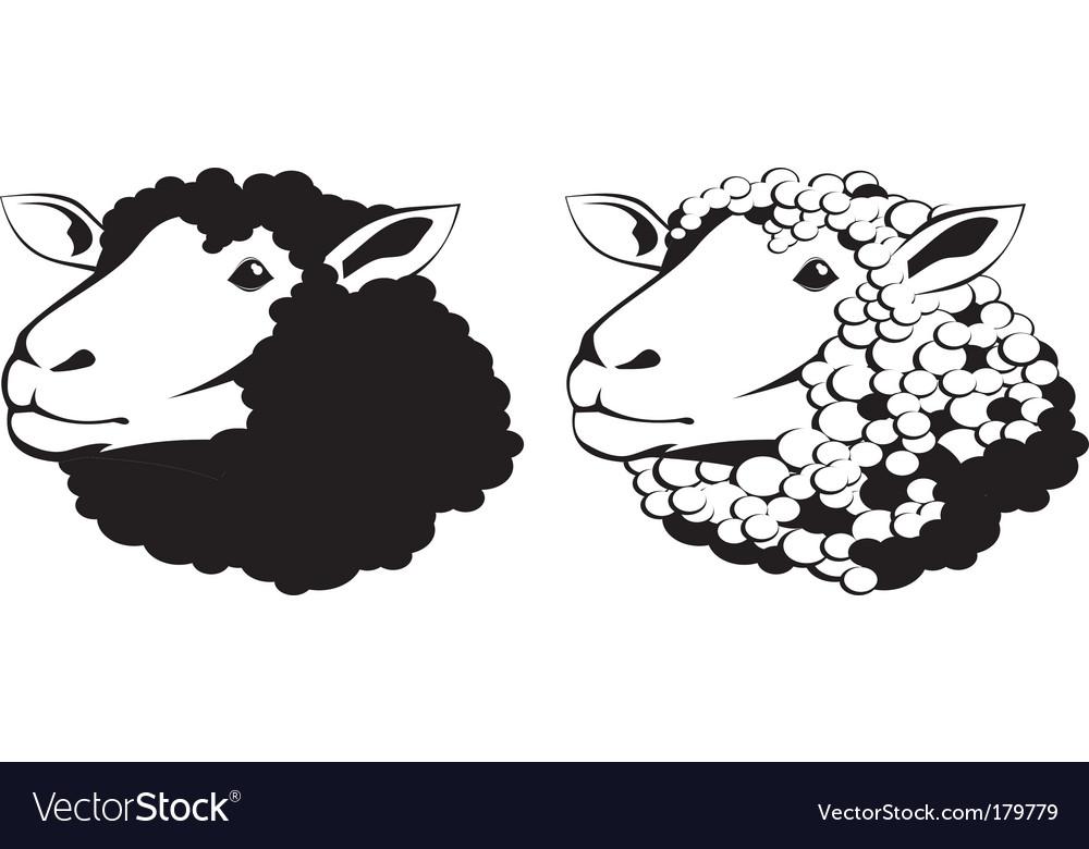 sheep royalty free vector image vectorstock rh vectorstock com sheep vector logo sheep vector art