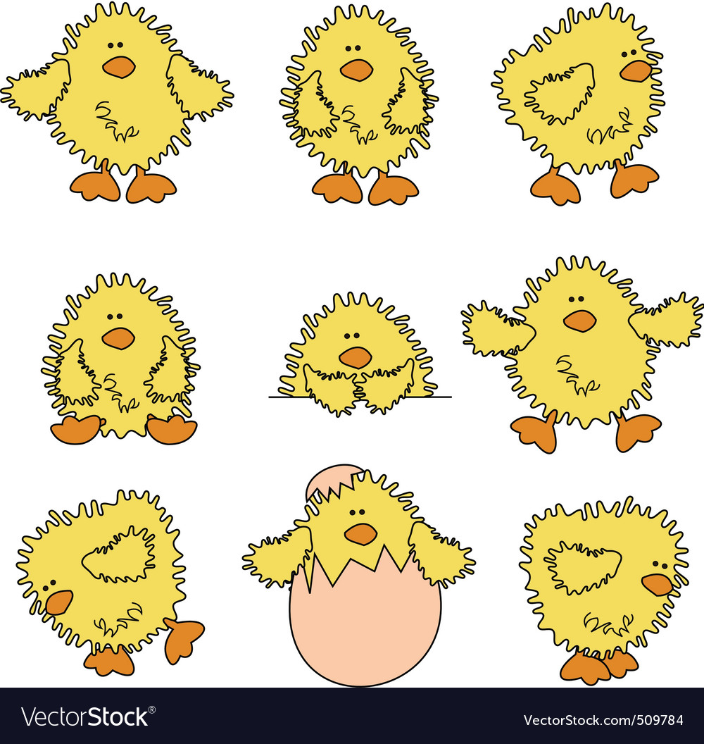 Cute easter chick vector image