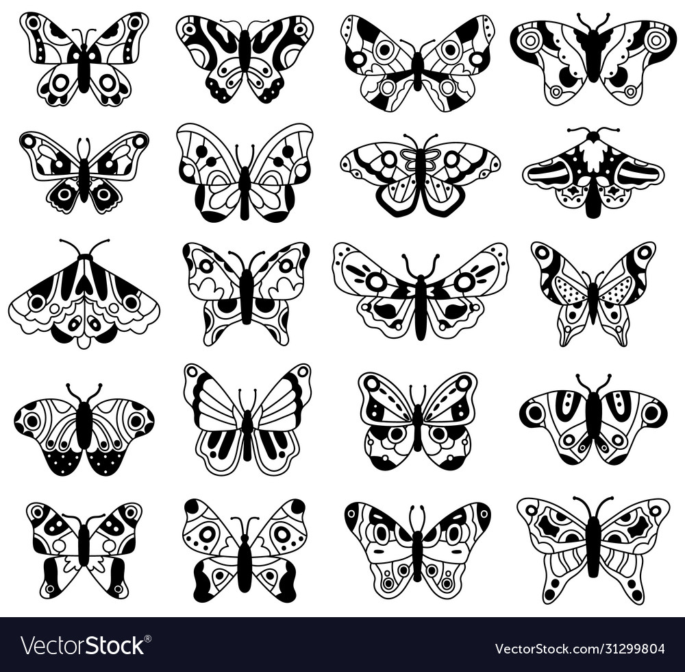 Doodle butterfly sketch flying butterflies hand