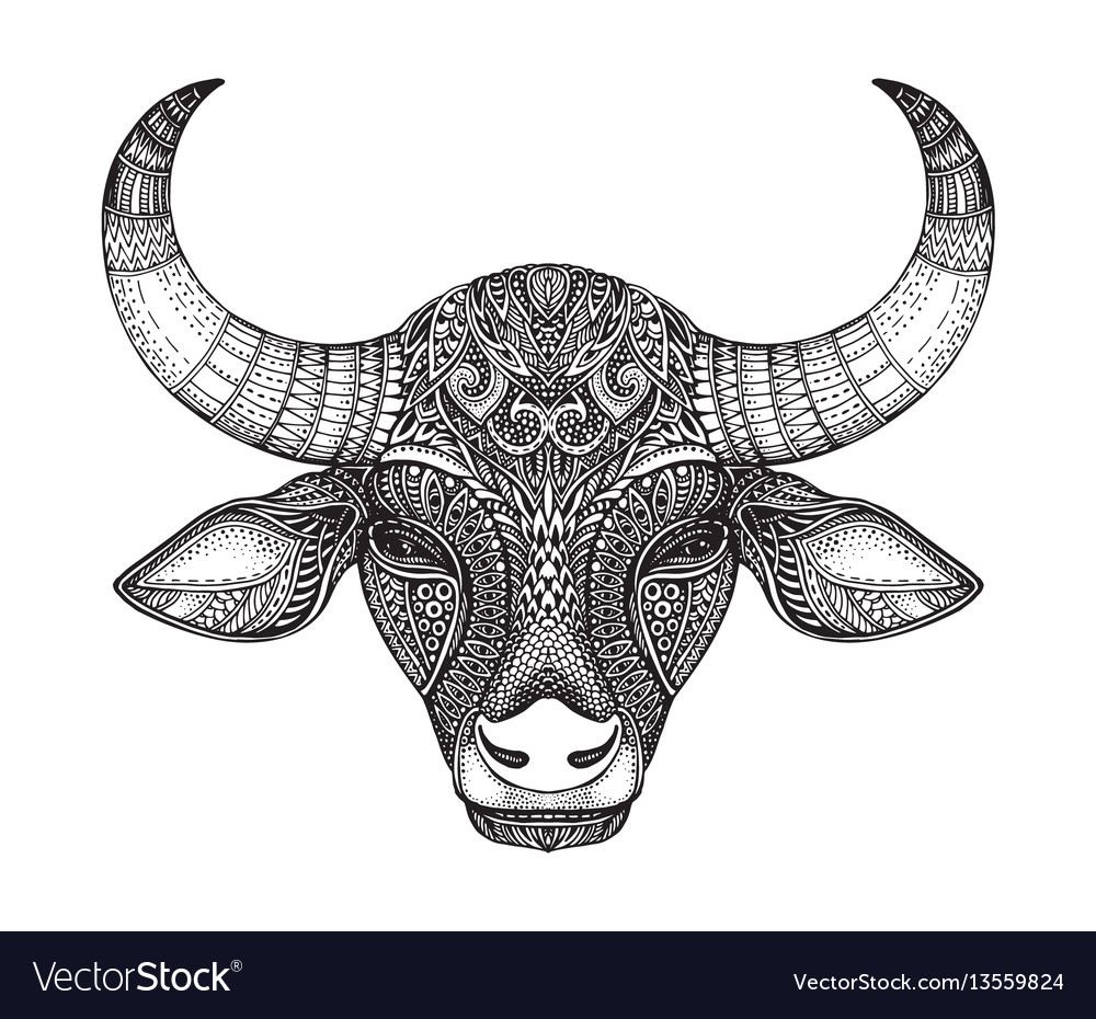 Patterned head of the bull