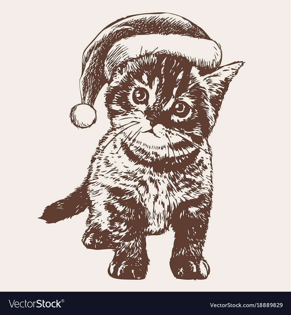 Little cat kitten with christmas santa hat