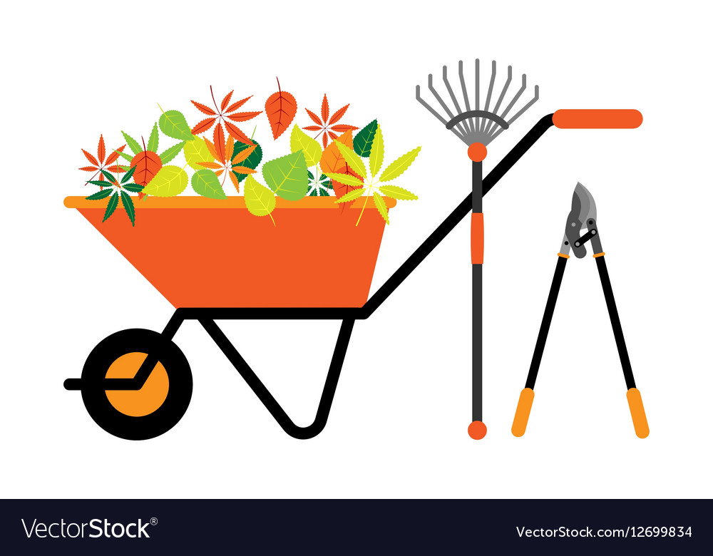 Cleaning leaves tools wheelbarrow
