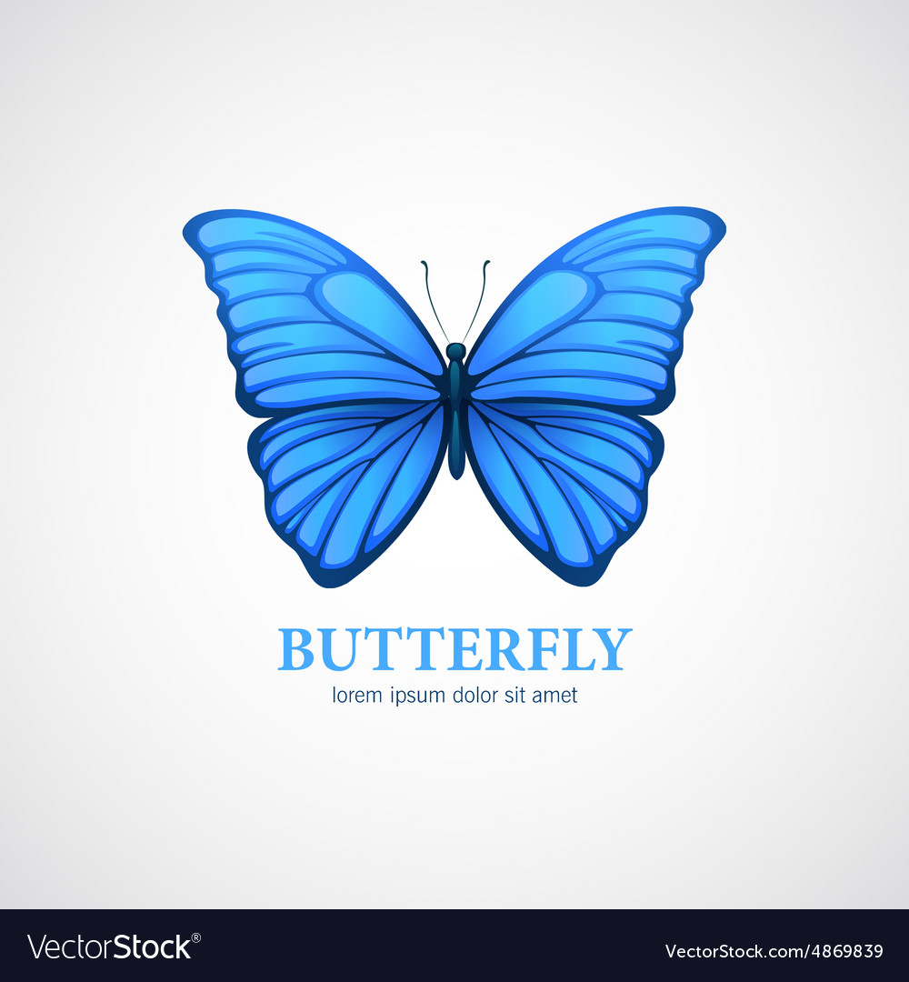 Butterfly logo design template Insect or