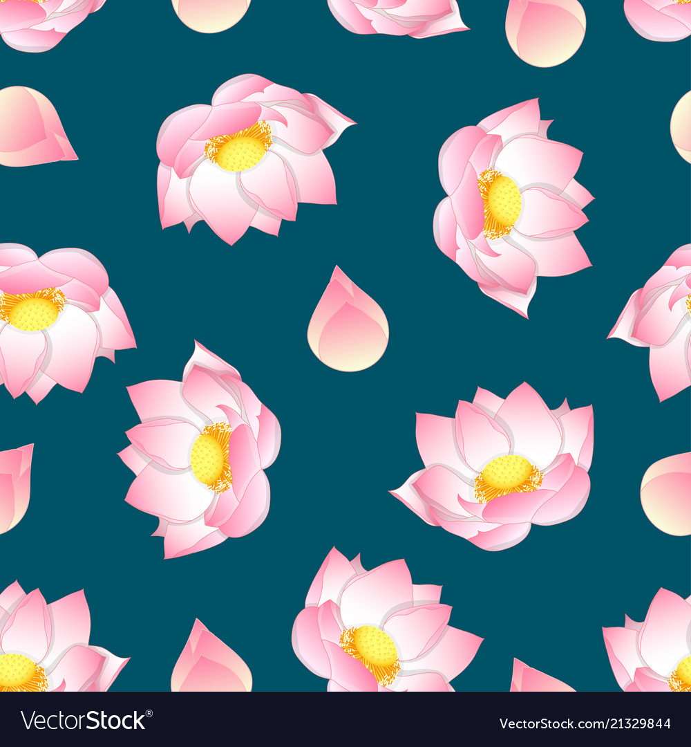 Pink Indian Lotus On Green Teal Background Vector Image