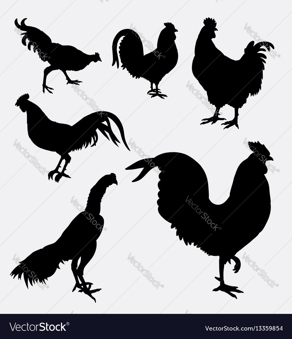 Rooster and chicken animal silhouette