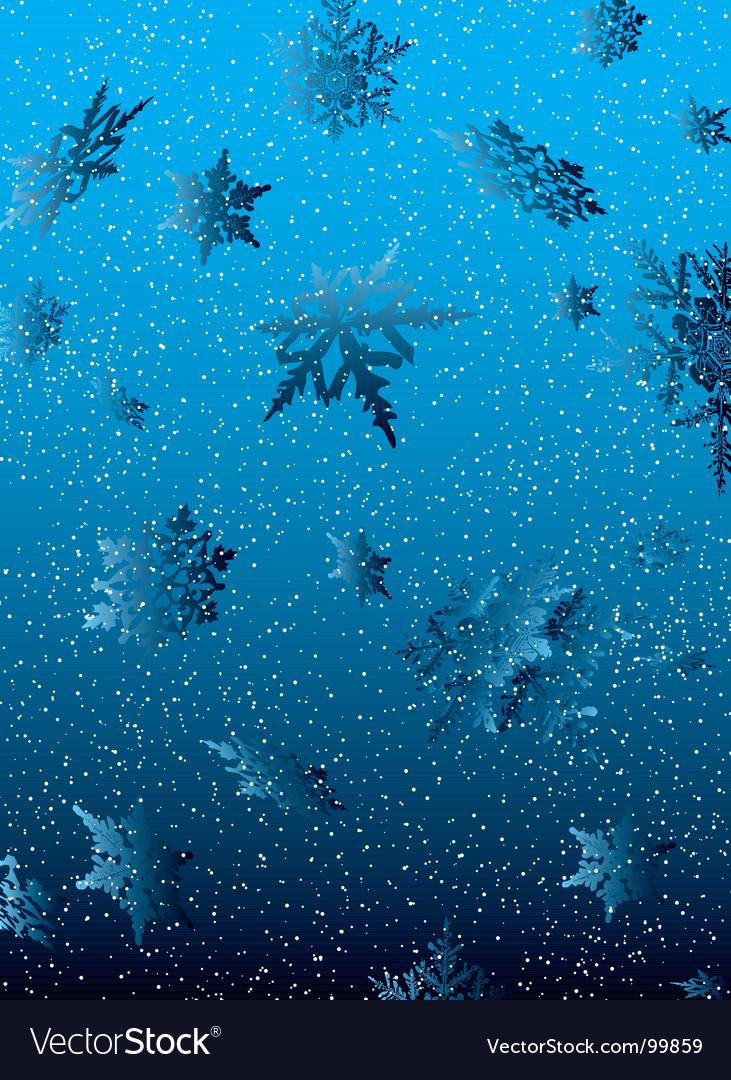 Snowflake white fall vector image
