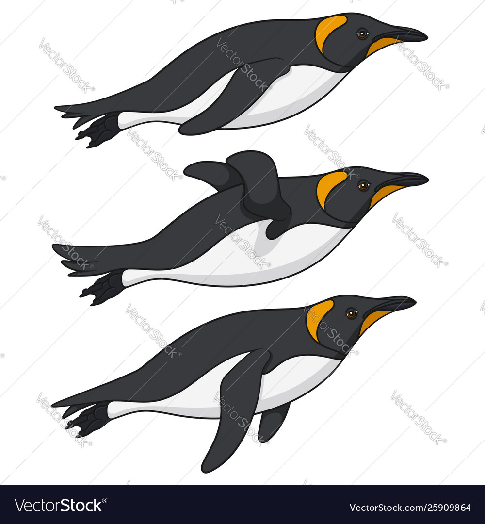 Set color with penguins swimming