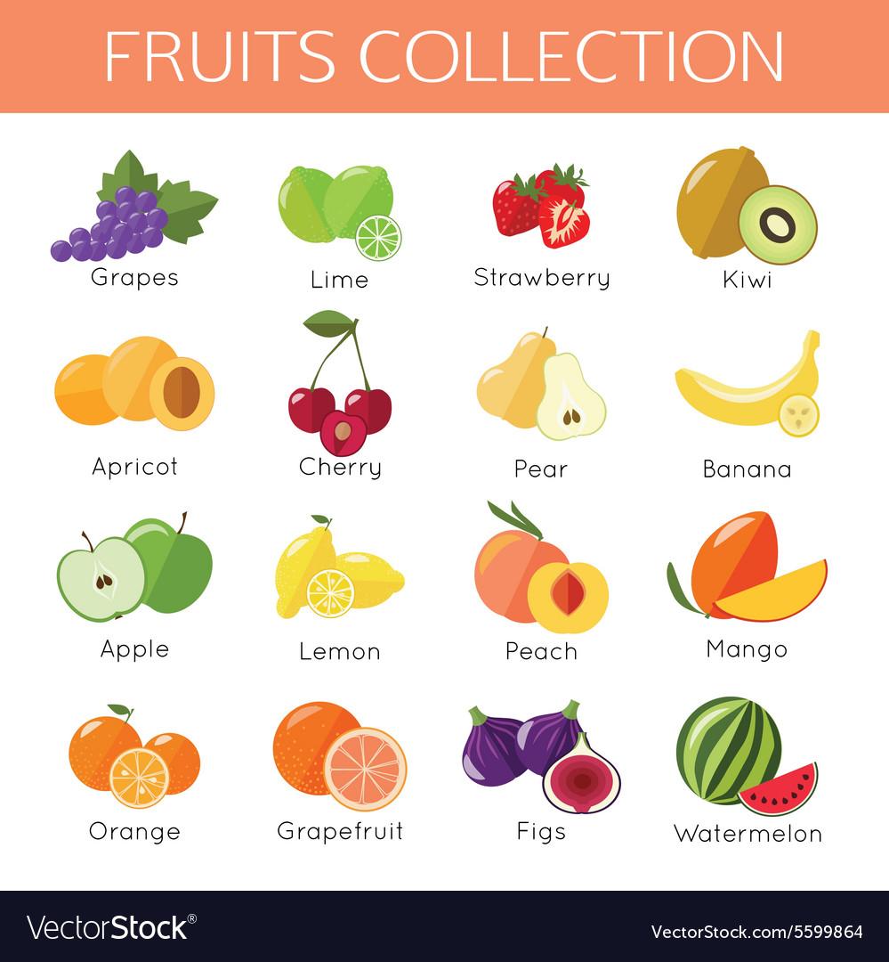 Set of fruits icons Flat style design
