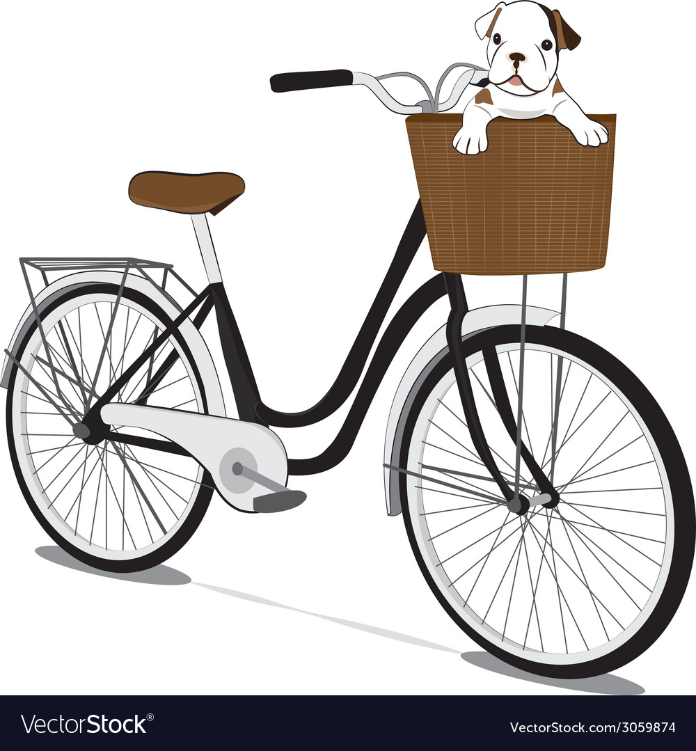 Bicycles and french bulldog Puppy
