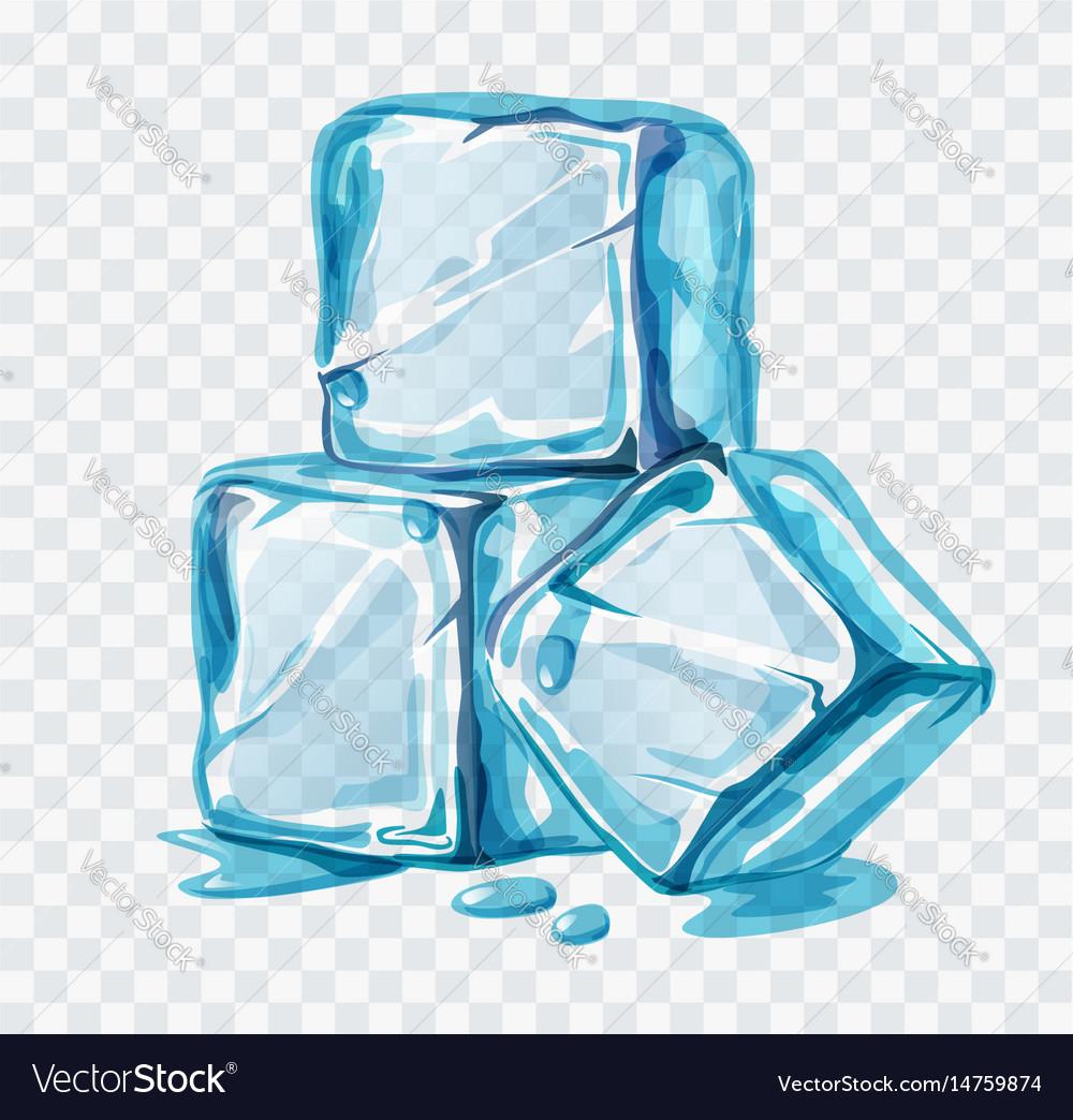 ice cubes royalty free vector image vectorstock vectorstock