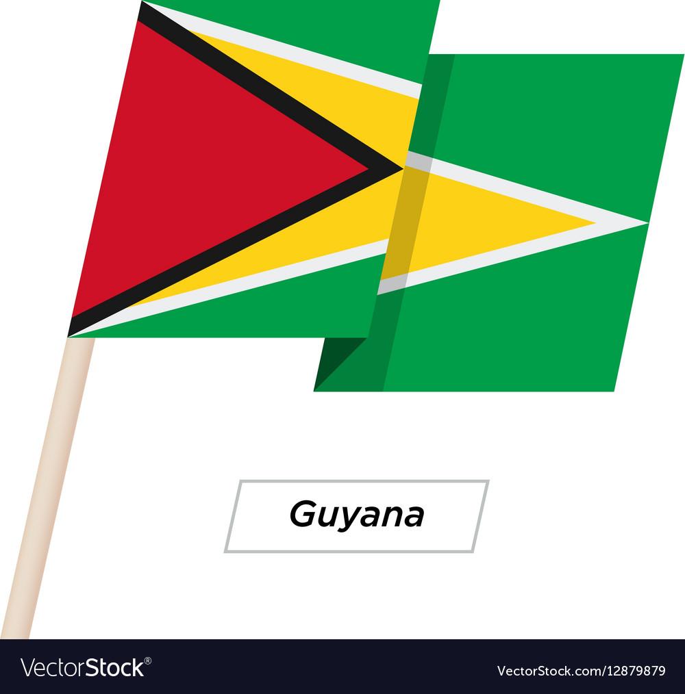 Guyana Ribbon Waving Flag Isolated on White vector image