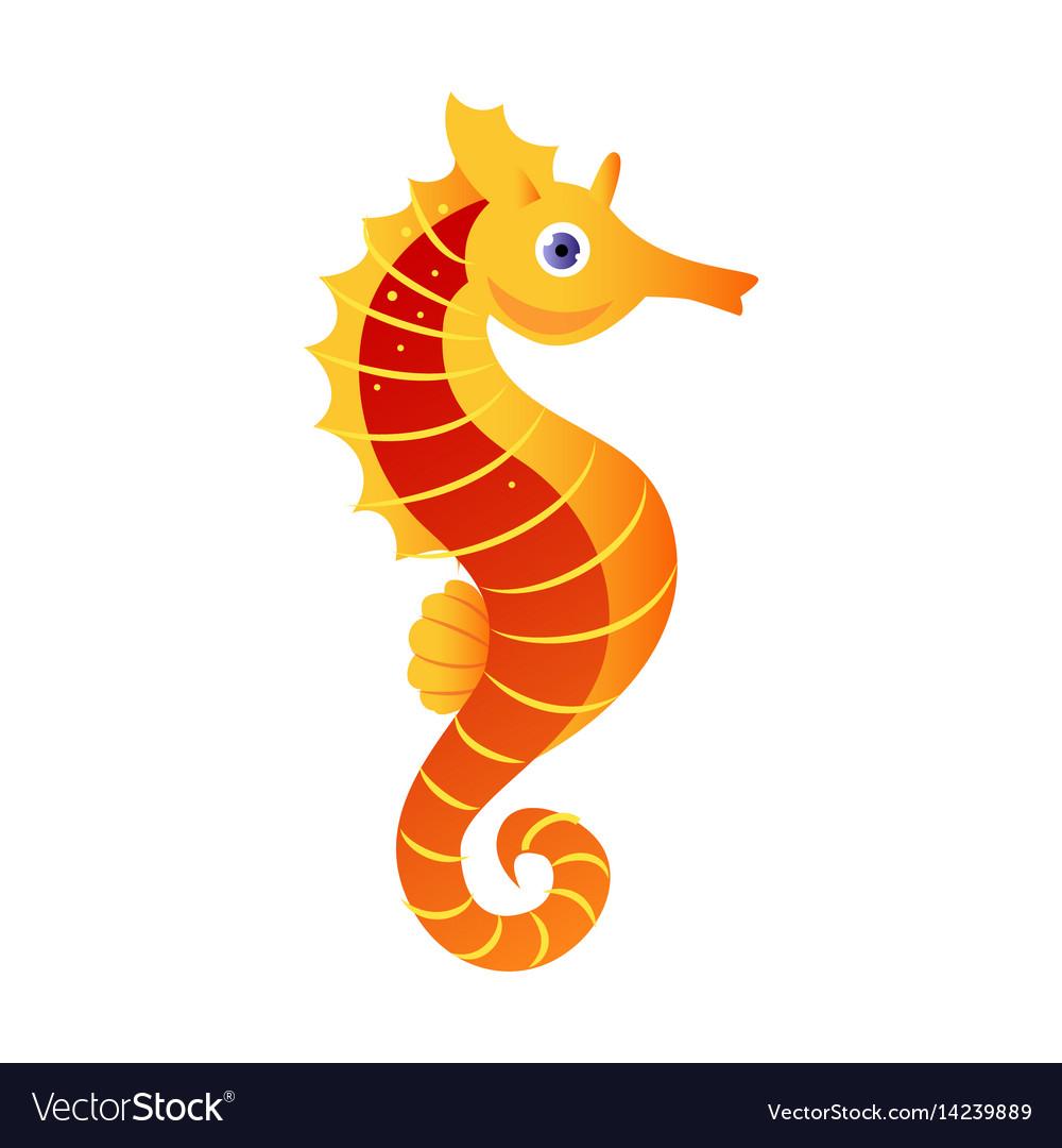 Seahorse or hippocampus sea creature colorful vector image