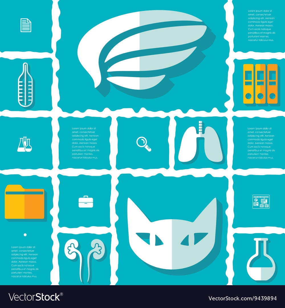 Veterinary flat infographic vector image