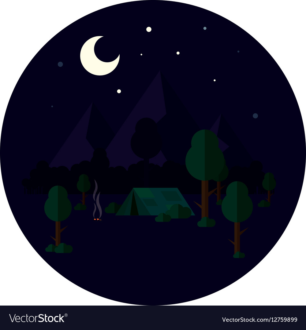 A tourist camp at night in vector image