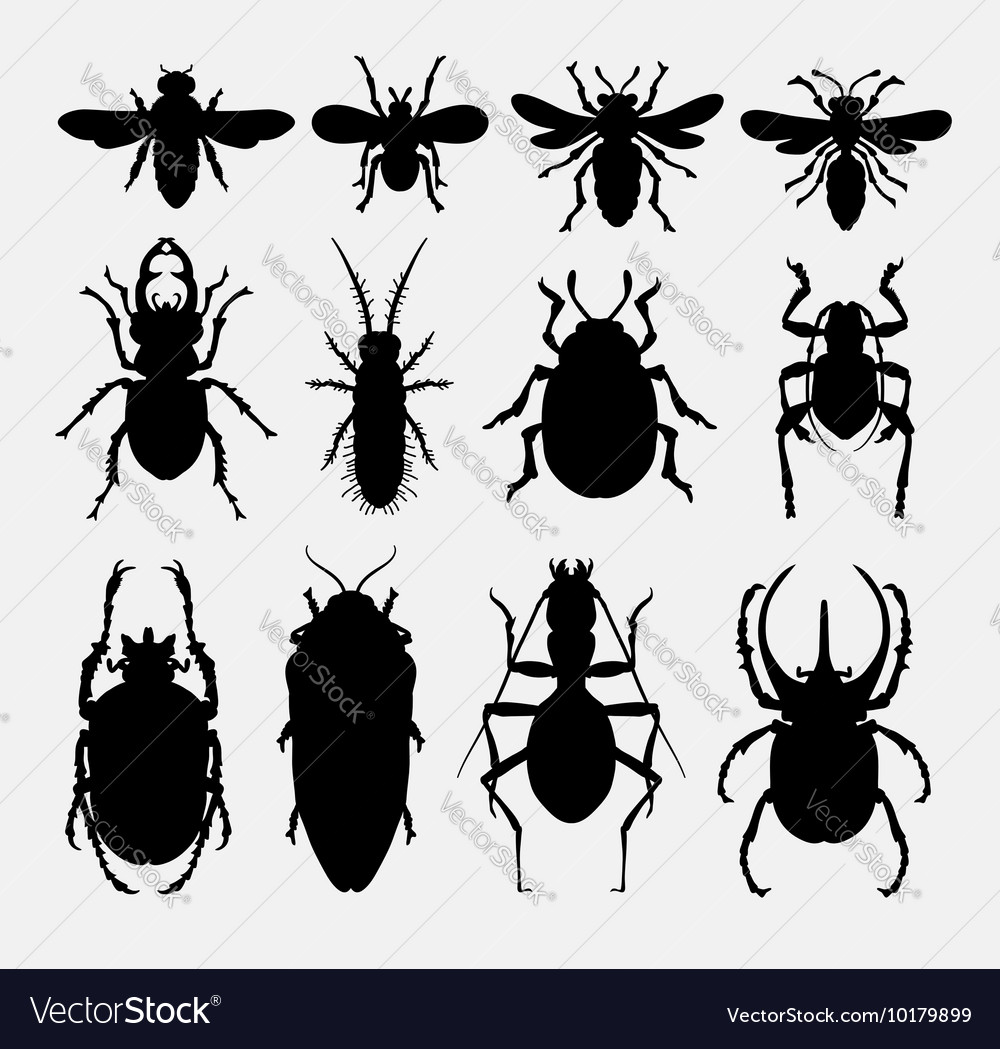 Insect bug small animal silhouette 2