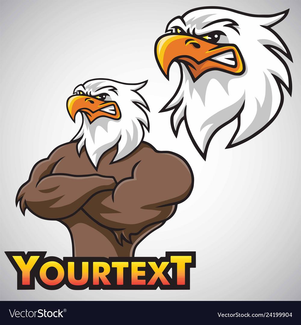 Eagle mascot character design set