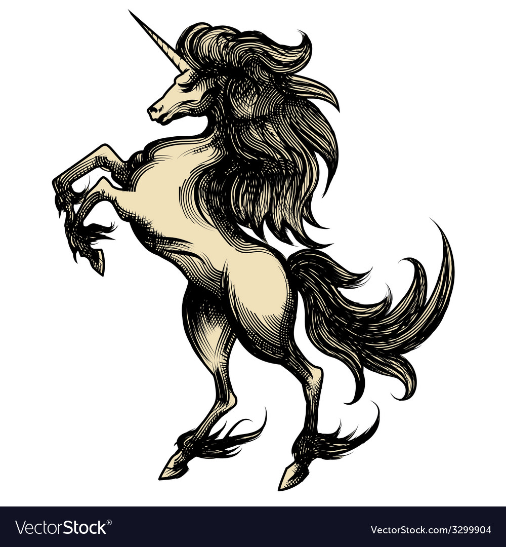 Heraldry unicorn drawn in engraving style vector image