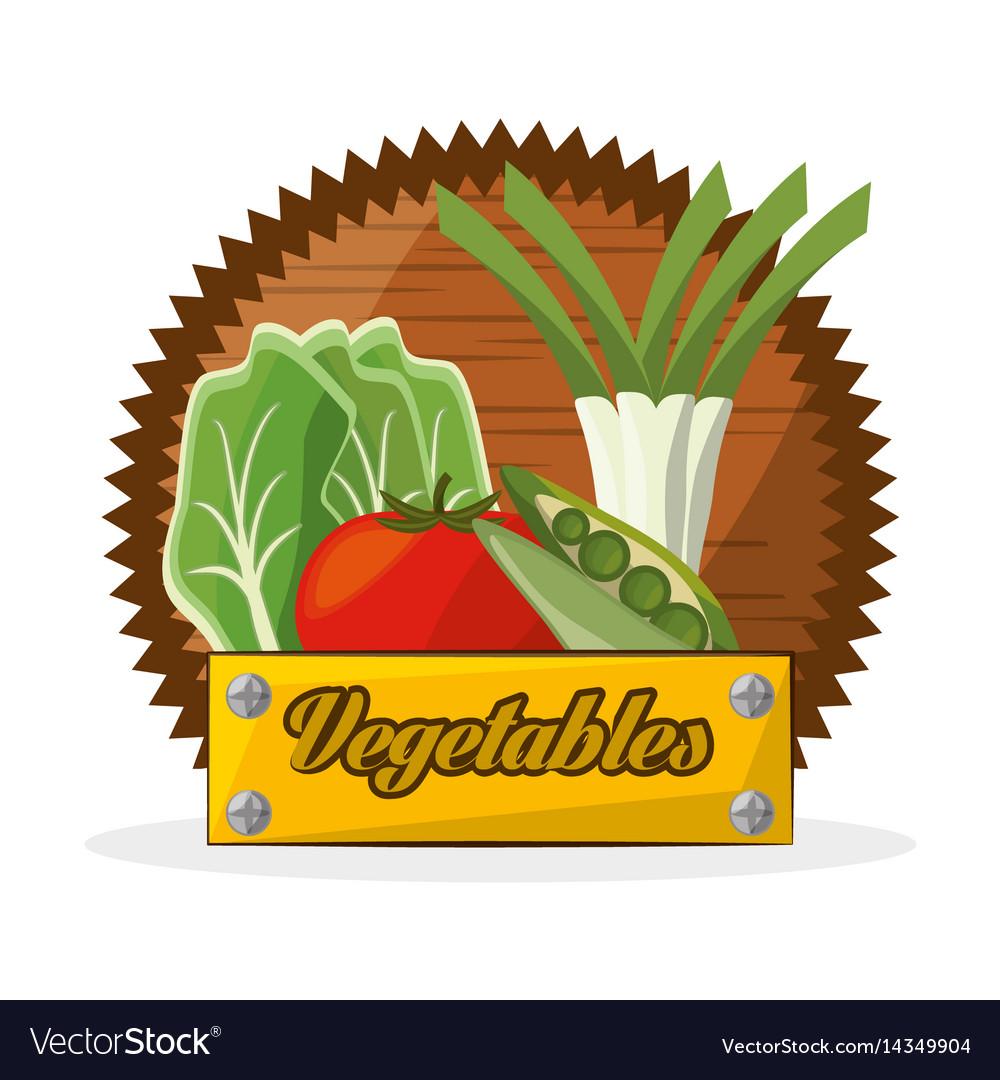 Vegetables food ingredient banner