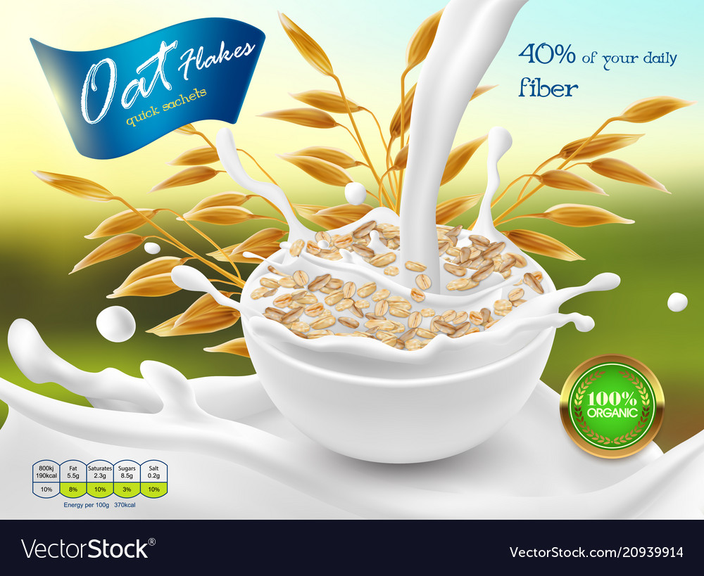 3d realistic package of oat flakes vector image