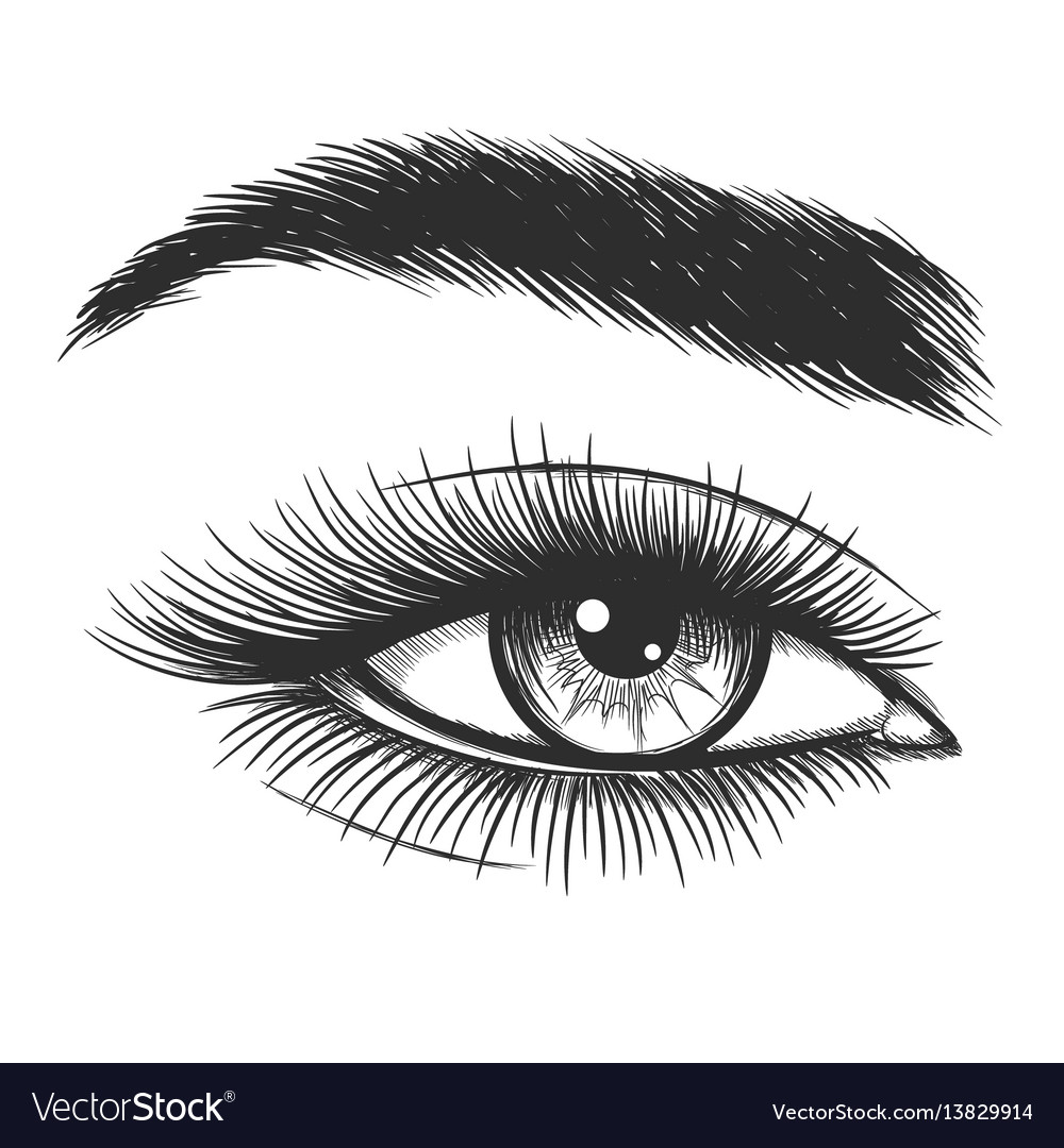 Beautiful Lady Eye Sketch Royalty Free Vector Image
