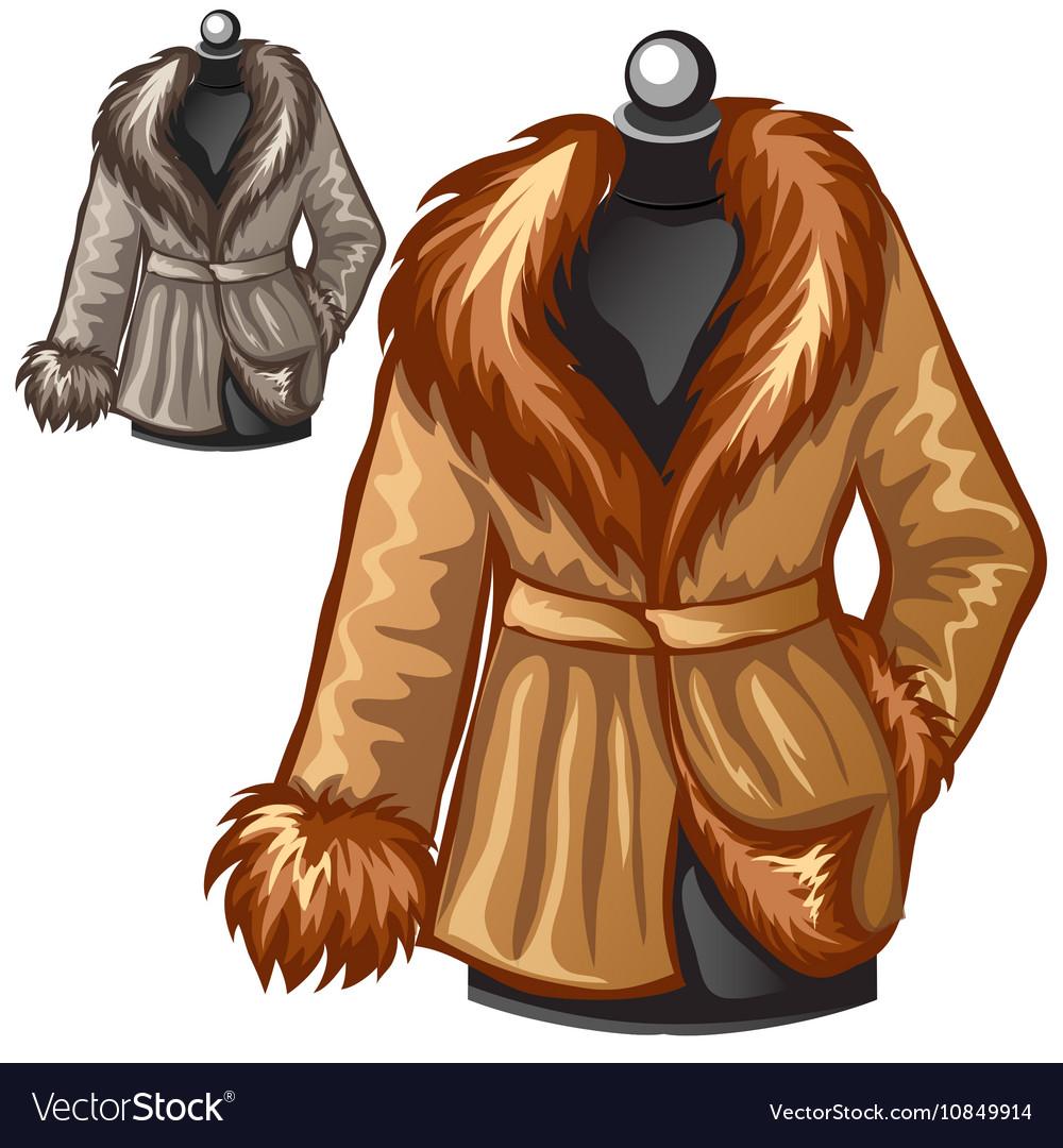 Womens brown winter coat with fur collar