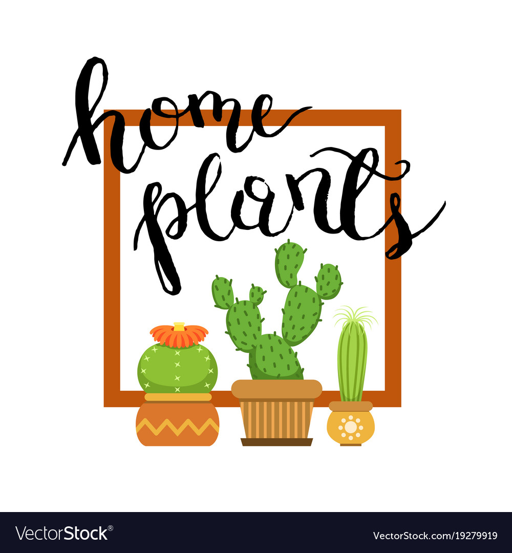 Banner with home green plant cactus