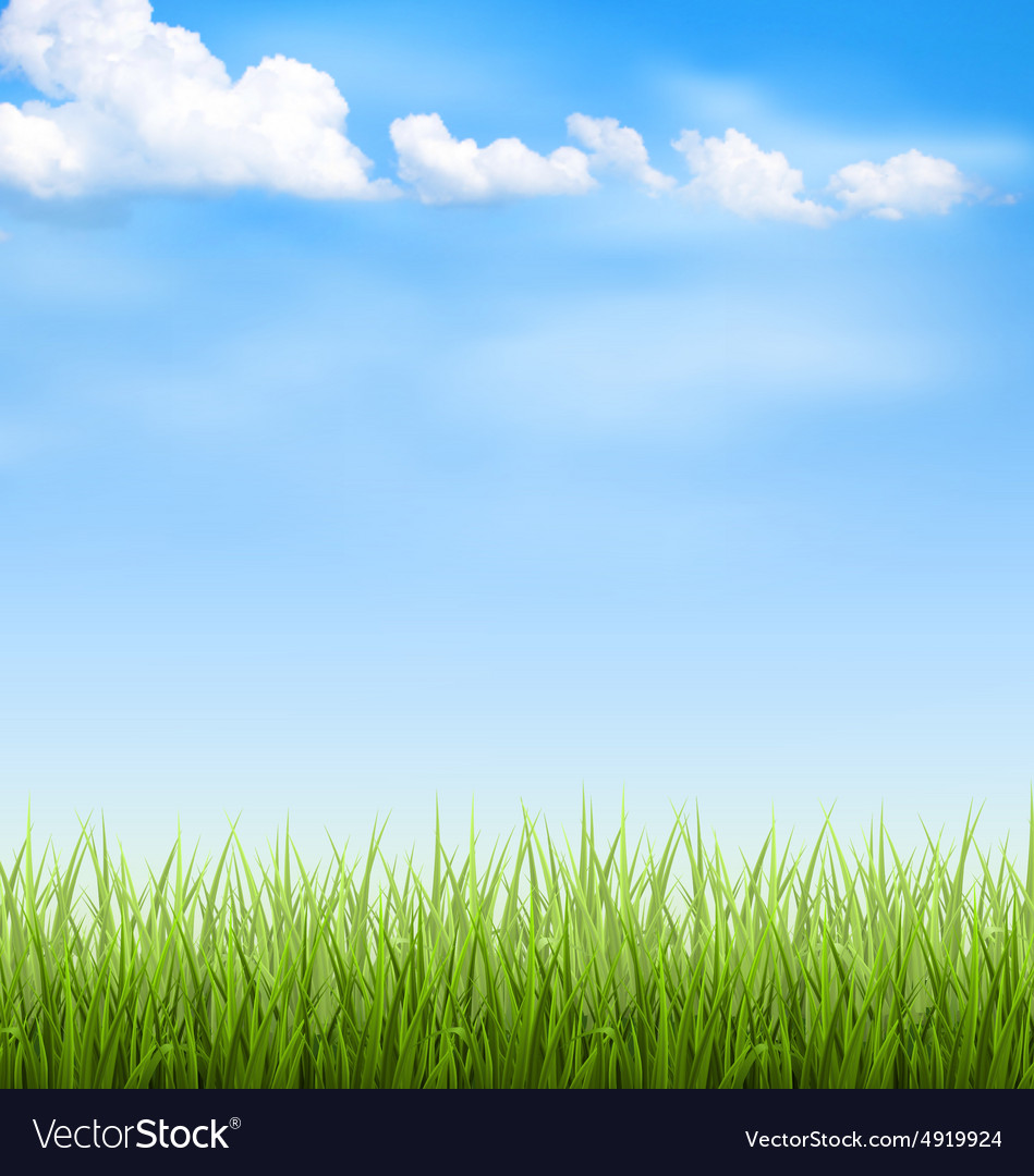 grass lawn with clouds on blue sky royalty free vector image
