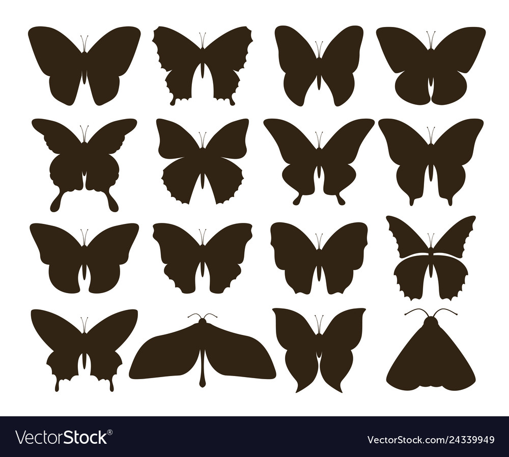 Silhouette butterflies simple collection hand