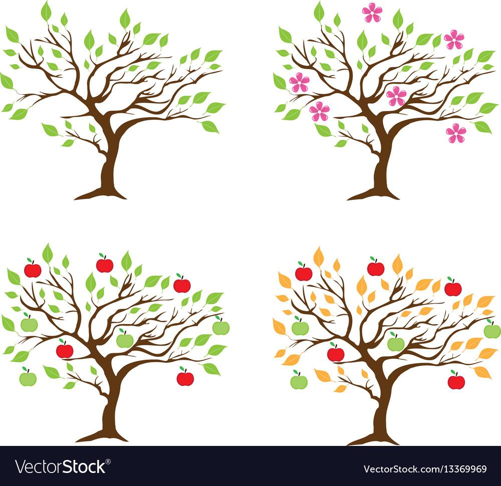 Apple tree season