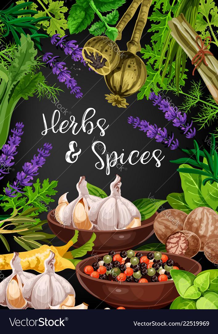 Herbs spices and food seasonings