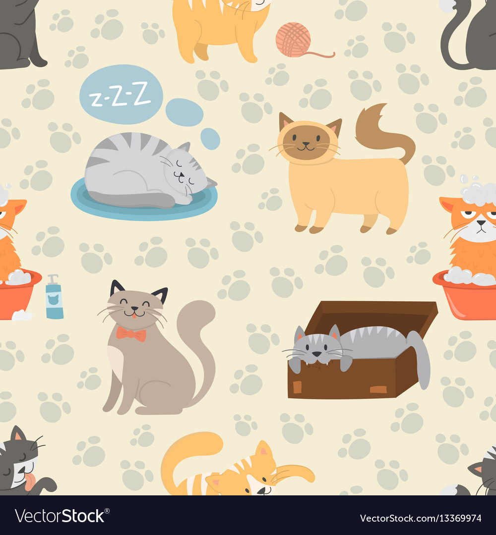 Cute cats character different pose seamless