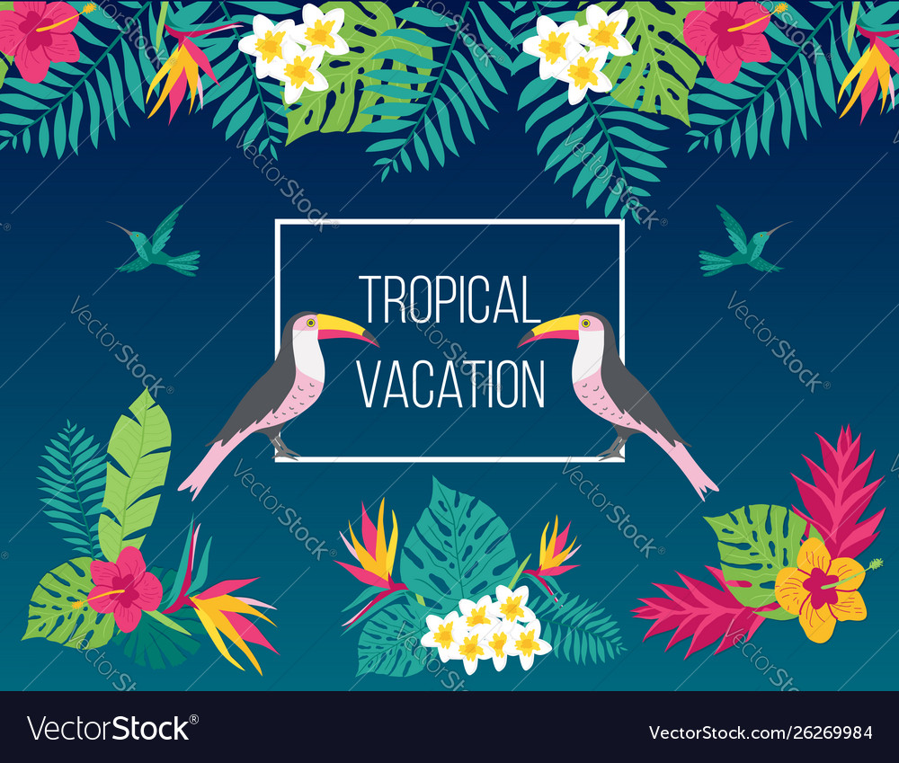 Floral summer background with tropical bird toucan