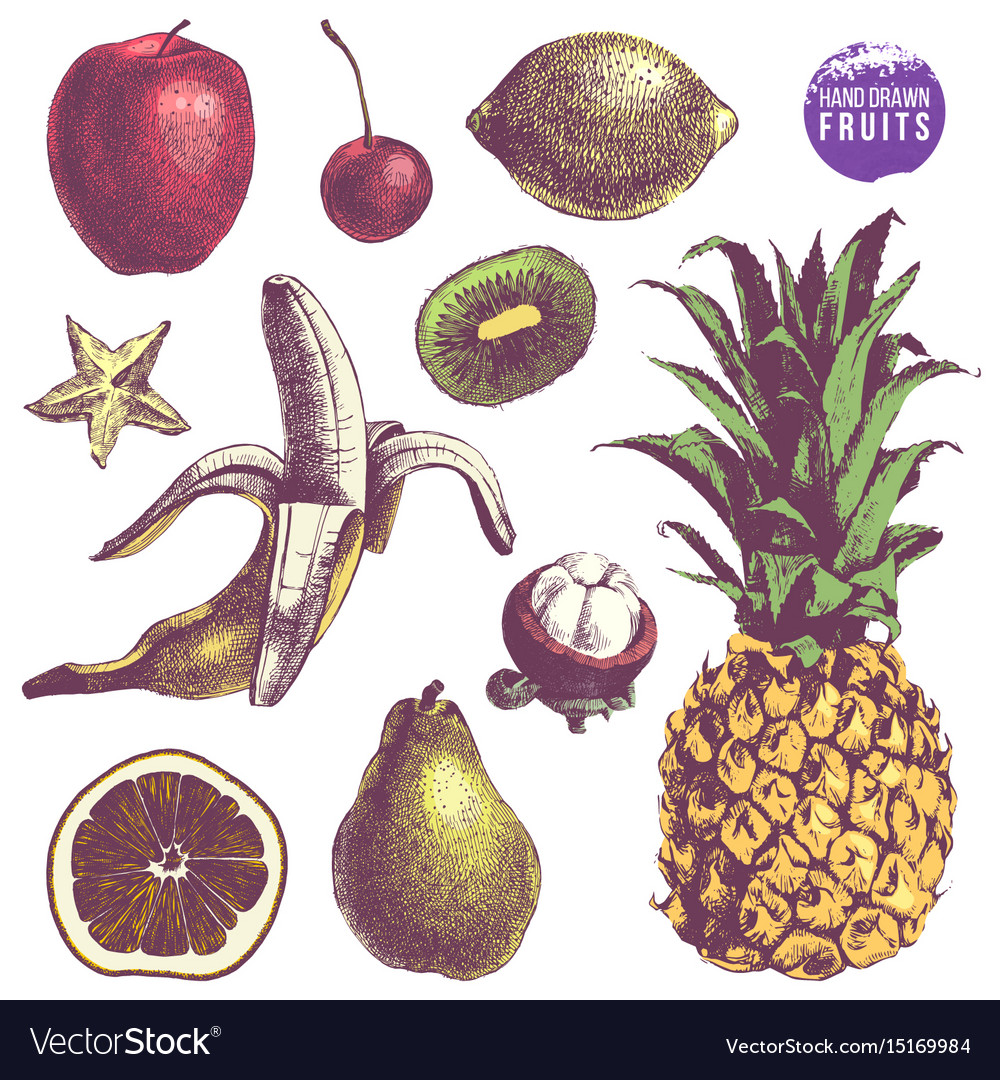 Set of hand drawn juicy fruits