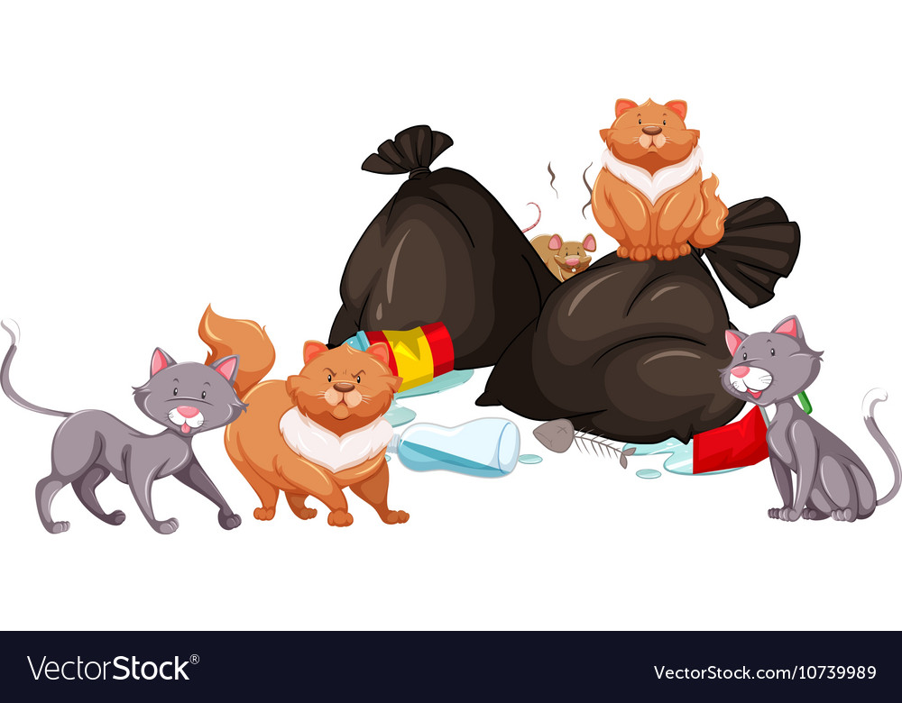 Cats and rat around the garbage pile vector image