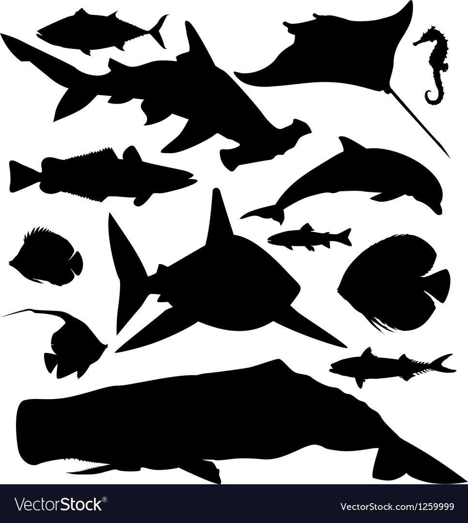 Ocean fish silhouettes set vector image