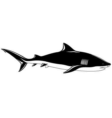 Shark Tattoo Vector. Artist: flanker-d; File type: Vector EPS